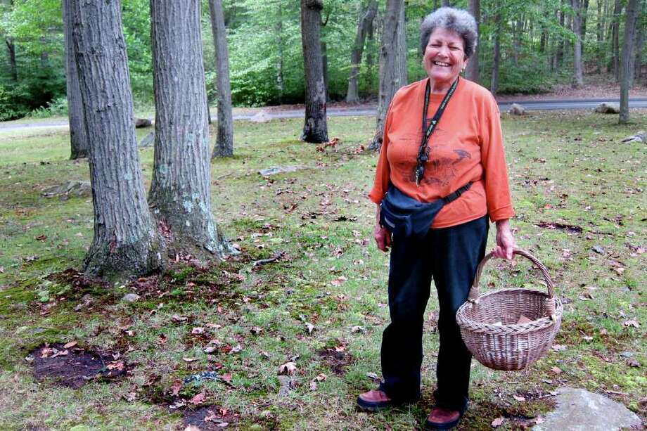 Terry Stoleson, of Trumbull, foraged for mushrooms in Beach Memorial Park in Trumbull, Conn. on Wednesday, Sept. 21, 2011. Stoleson has been foraging for mushrooms for the past 30 years. Photo: Vinti Singh / Connecticut Post