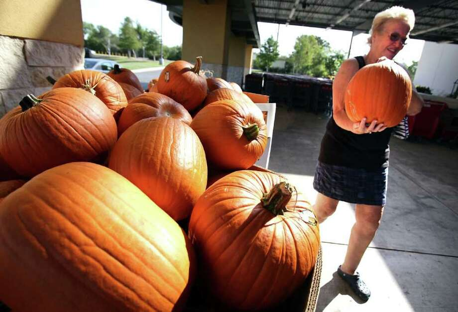 Bob Owen : San Antonio Express-News PICKING PUMPKINS: June Wilp heads off with her selection Friday at an H-E-B store in the San Antonio area. Because of the drought, pumpkin production in Texas has been nearly cut in half. Photo: BOB OWEN / rowen@express-news.net