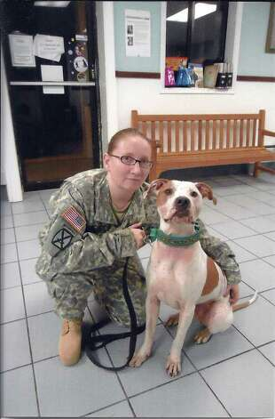 Army specialist Heather Babcock and her pet pit bull, Trooper.  As Babcock prepares for a year of nation building and possible combat, she is desperately trying to find a foster home for Trooper. She is one of about 3,000 New York Army and Air National Guardsmen who will be sent to Afghanistan and Iraq in 2012.  (Photo provided by Cydney Cross of Out of the Pits)