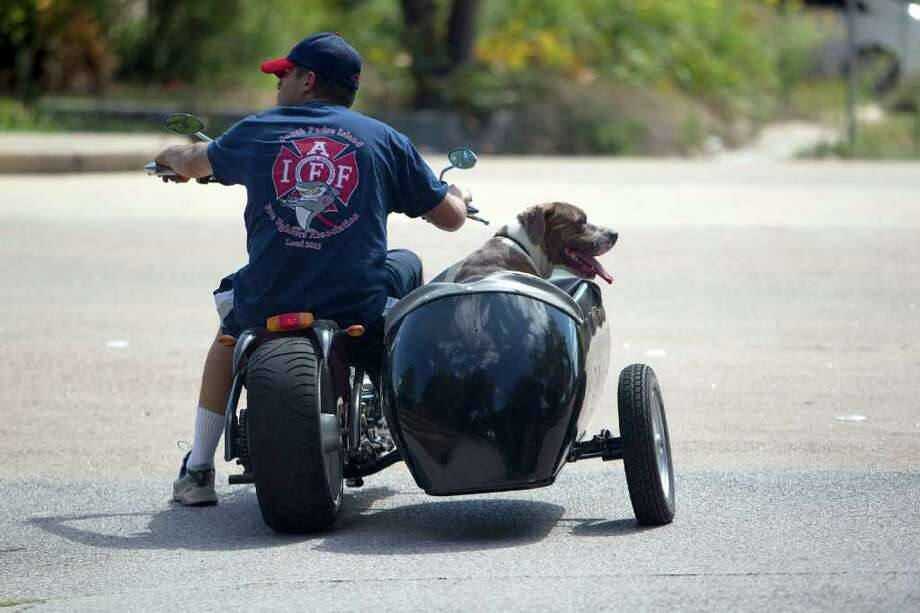 """With his pit bull named Yuck in the sidecar, Ivan Machado, 32, rides his """"mini chopper"""" motorcycle near the corner of Mall and Lido in the Oak Forrest neighborhood Tuesday, Sept. 27, 2011, in Houston.  """"He seems to like it,"""" Machado said of his dog Yuck riding in the sidecar. """"I just set it up today, this is our first ride."""" Photo: Johnny Hanson, Houston Chronicle / © 2011 Houston Chronicle"""
