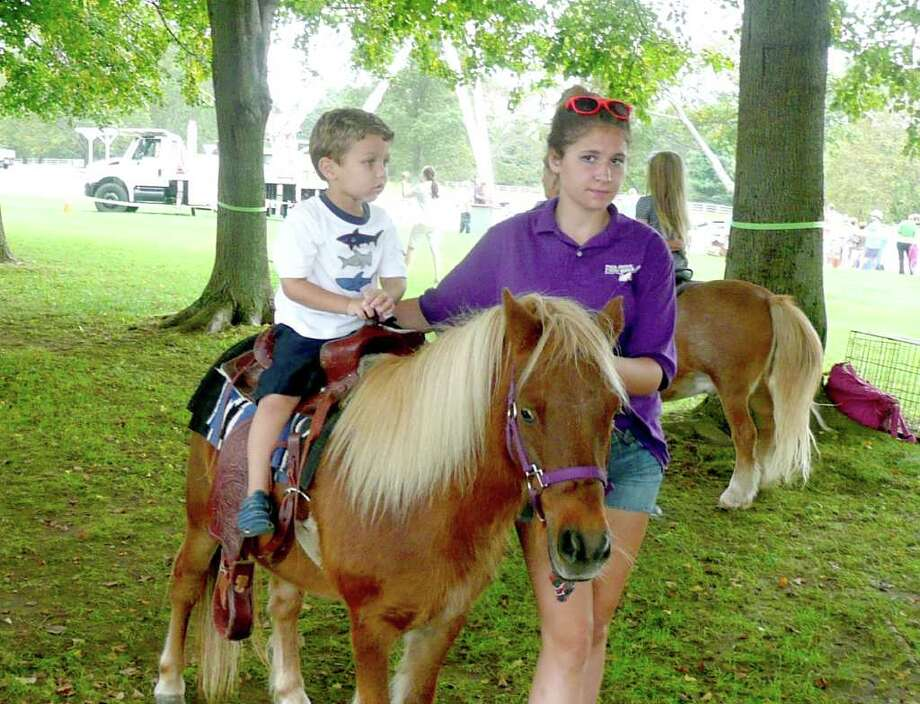 Derrick Lamar, 3, sits atop a pony for the first time at Go Wild! Photo: Anne W. Semmes