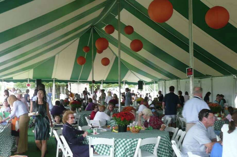 "12th annual ""Go Wild"" benefit for Greenwich Land Trust at the Greenwich Polo Club field on Sept. 25, 2011 Photo: Anne W. Semmes"