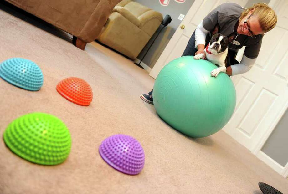 Dawn Lowery, trainer and owner of One Smart Dog, will soon be offering Pilates for Pooches, to give the family pet -- and its owner -- some healthy exercise.  She demonstrates the program with her dog Manny at her home in Ansonia, Conn. Photo: Autumn Driscoll / Connecticut Post