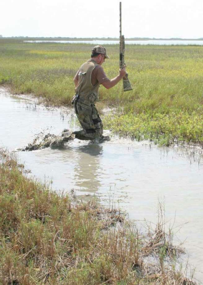 SOGGY SLOG - Pursuing rails in their coastal marsh habitat can be a hot, sloppy affair requiring hunters to maneuver a landscape veined with shallow waterways and boot-sucking mud. Photo: Shannon Tompkins