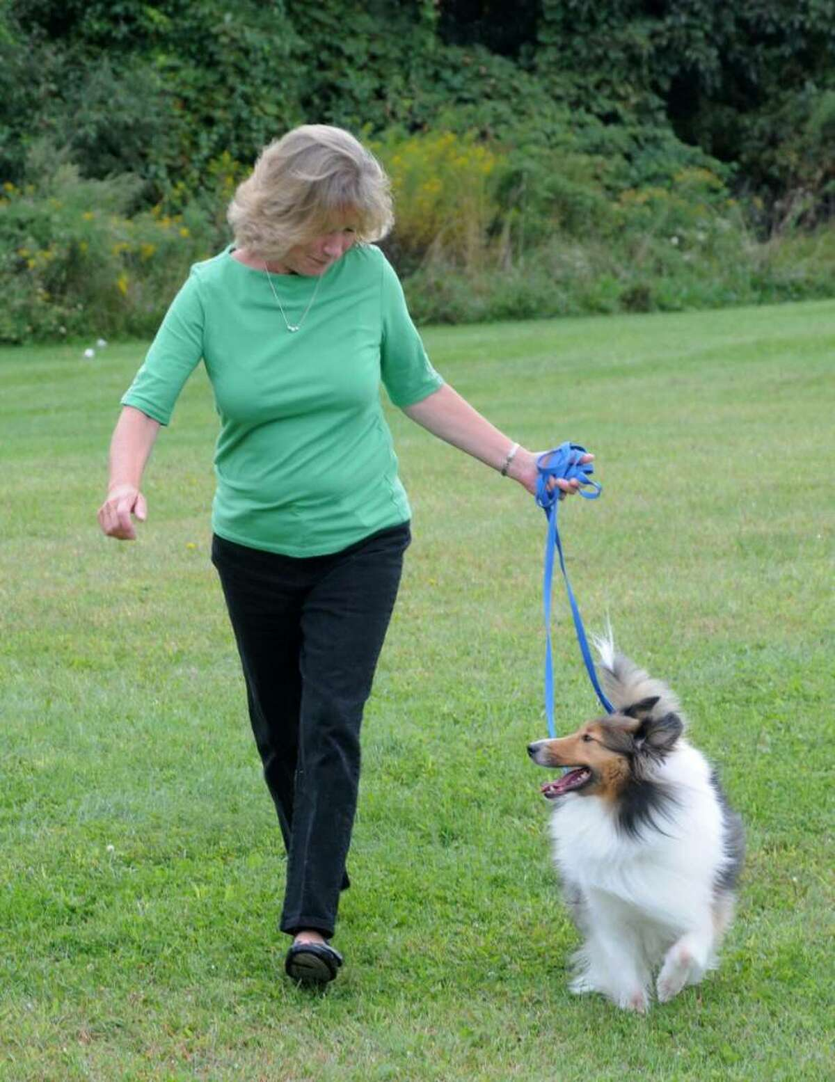 The New Fairfield Dog Owners Group has been working hard for over a year to build a dog park in New Fairfield. The group just received a grant for fences for the park from Petco. Sue Garufi of New fairfield, the founder of the group, walks her dog Harrison on the proposed sight on Thursday Sept. 17, 2009