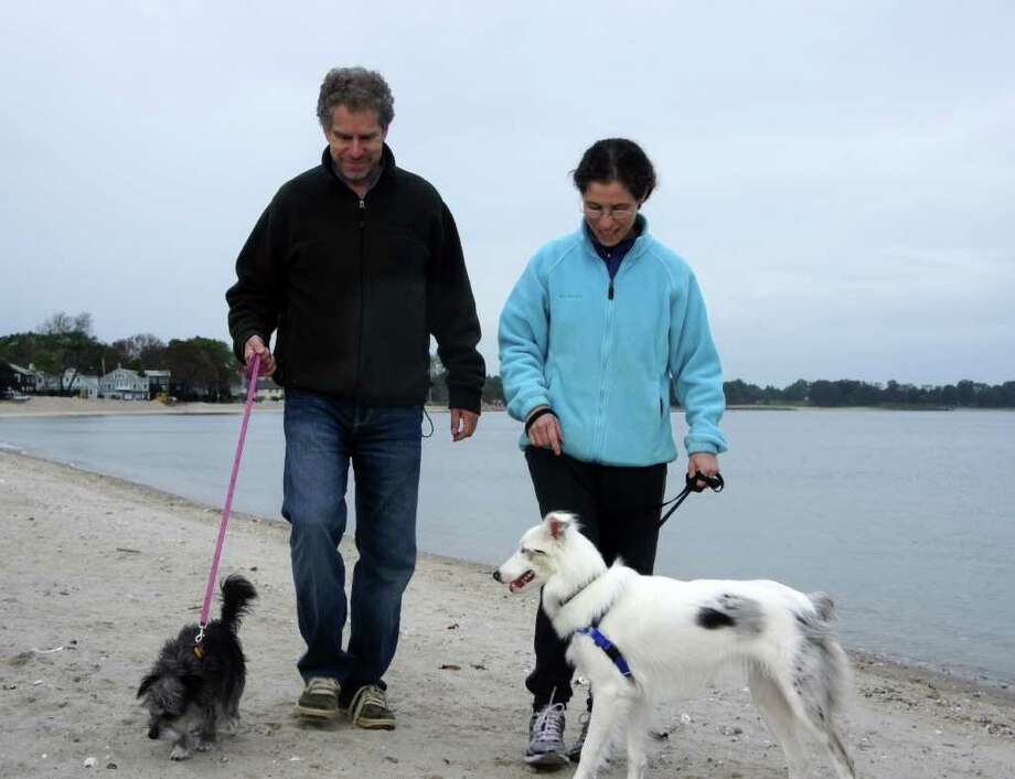 Warren and Melissa Shapiro enjoy a walk at Compo Beach with Susie, left, a Terrier mix, and Gina, an Australian Shepherd. Susie and Gina are rescue dogs. Photo: Paul Schott / Westport News