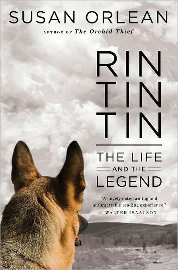 Cover image for Rin Tin Tin, by Susan Orlean; $26.99 Product Details Hardcover: 336 pages Publisher: Simon & Schuster (September 27, 2011) Language: English ISBN-10: 1439190135 ISBN-13: 978-1439190135 Photo: Xx