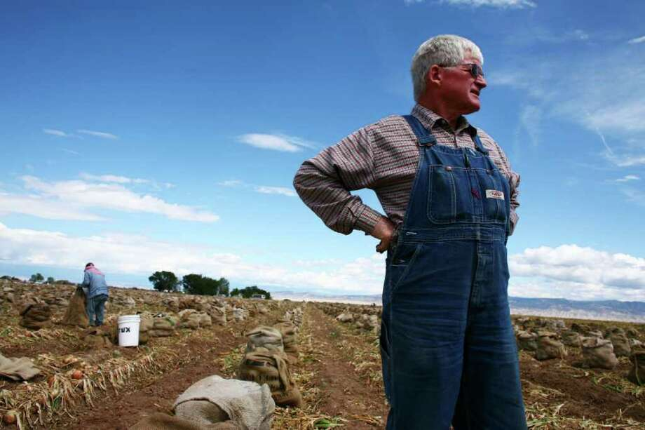 MATTHEW STAVER : NEW YORK TIMES  CAN'T GET HELP: John Harold thought $10.50 an hour would be enough to get jobless U.S. workers to harvest his onions outside Olathe, Colo. He found out differently. Photo: MATTHEW STAVER / NYTNS