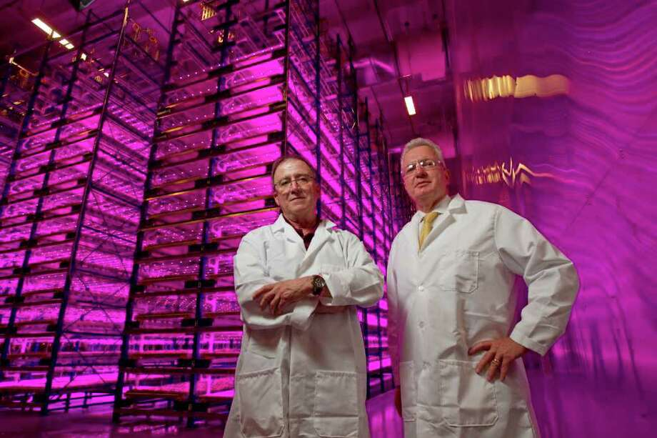 Melissa Phillip : CHRONICLE LET THERE BE VACCINE: Dr. Barry Holtz, left, and Dr. Brett Giroir in a germination room in College Station, where tobacco-like plants germinate in light that optimizes photosynthesis. Photo: Melissa Phillip / © 2011 Houston Chronicle
