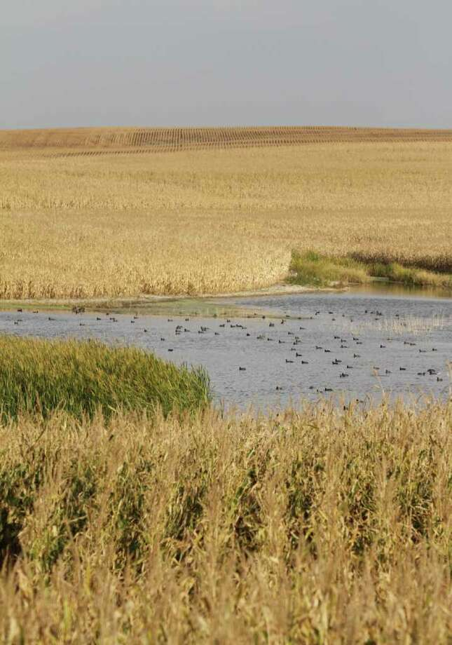 PRAIRIE OF PLENTY - The duck-rich prairie pothole country of North Dakota holds some of the best free-lancing waterfowling opportunities in the nation, thanks to an abundance of public lands, many paid for by hunters dollars.