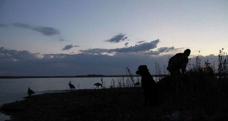 DAKOTA DAWN - Mike Furtman readies his gear and layout blind while Bella, his Lab, watches the sky for approaching ducks during a waterfowl hunt on the bird-rich prairie pothole country of North Dakota this past week. Photo: Shannon Tompkins