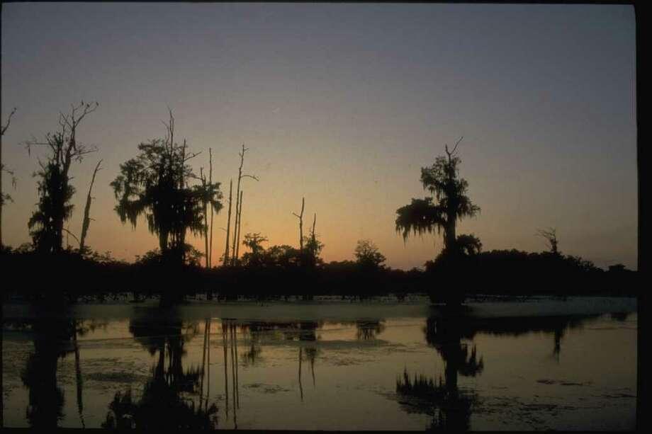 Lake Martin at sunrise near Breaux Bridge, Louisiana, the heart of Cajun Country. Photo: Office Of Tourism