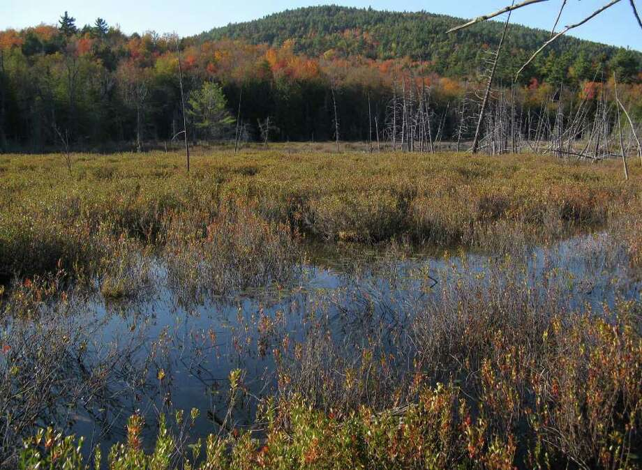 Photo by Herb Terns A view from the Treadway Mountain Trail of Big Clear Pond Mountain rising behind Mud Pond.