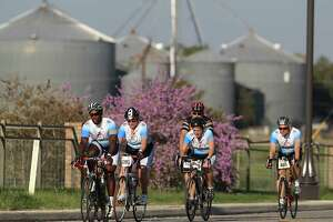 Cyclists ride along Farm-to-Market Road 1346 near St. Hedwig as they ride in the first leg of the Bike MS: Valero 2011 Alamo Ride to the River, presented by H-E-B on Saturday, Oct. 15, 2011. The ride started at the AT&T Center and finished in New Braunfels. The second day will have the cyclists return to  San Antonio. The event raises funds for Multiple Sclerosis research and for those afflicted with the disease. Kin Man Hui/kmhui@express-news.net