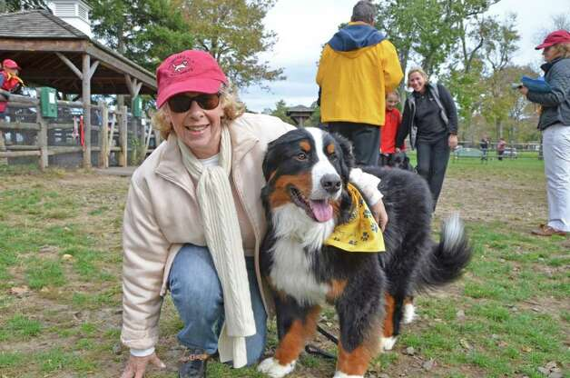 Nancy Freeman with Doc, her Bernese Mountain Dog, also contending for Most Handsome Dog. Photo: Jeanna Petersen Shepard