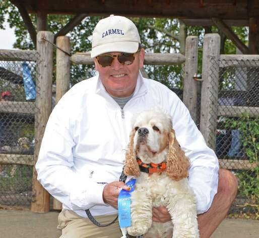 First prize for Best Wagger goes to Milo, Larry Sullivan's Cocker Spaniel! Photo: Jeanna Petersen Shepard