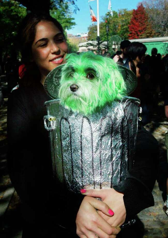 NEW YORK - OCTOBER 26:  Dog Oliver is dressed as Oscar the Grouch with owner Niki Khindri during the 18th annual Tompkins Square Halloween Dog Parade October 26, 2008 in New York City. The event is the largest dog Halloween party in the United States with an annual attendance of over 400 costumed dogs. Photo: Mario Tama, Getty Images / 2008 Getty Images
