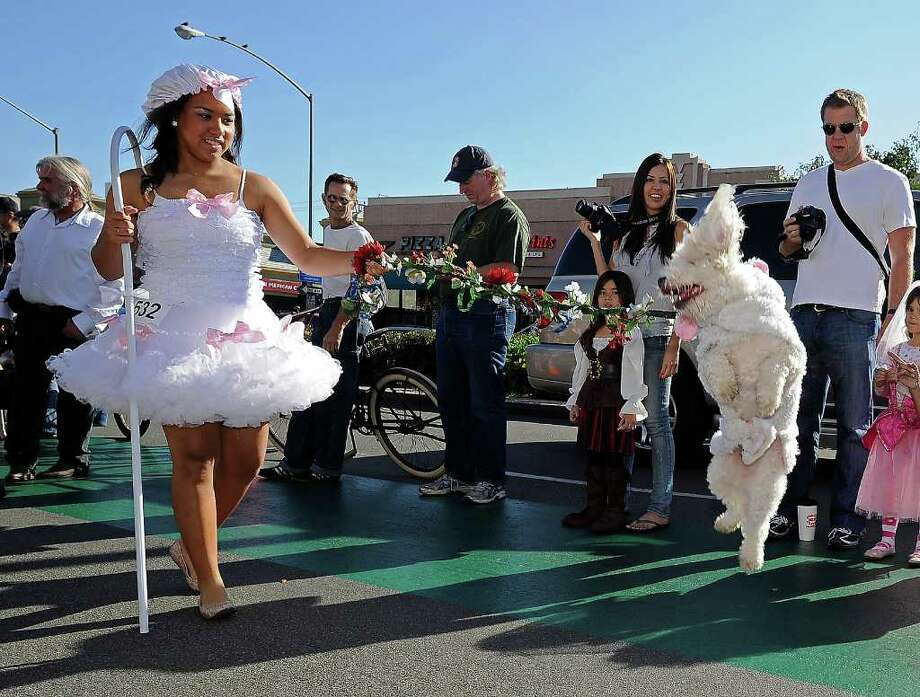 A woman dressed as Little Bo Peep and her dog march in the Halloween Dog Costume Parade in Long Beach, California on October 31, 2010.   AFP PHOTO / Robyn Beck Photo: ROBYN BECK, AFP/Getty Images / 2010 AFP