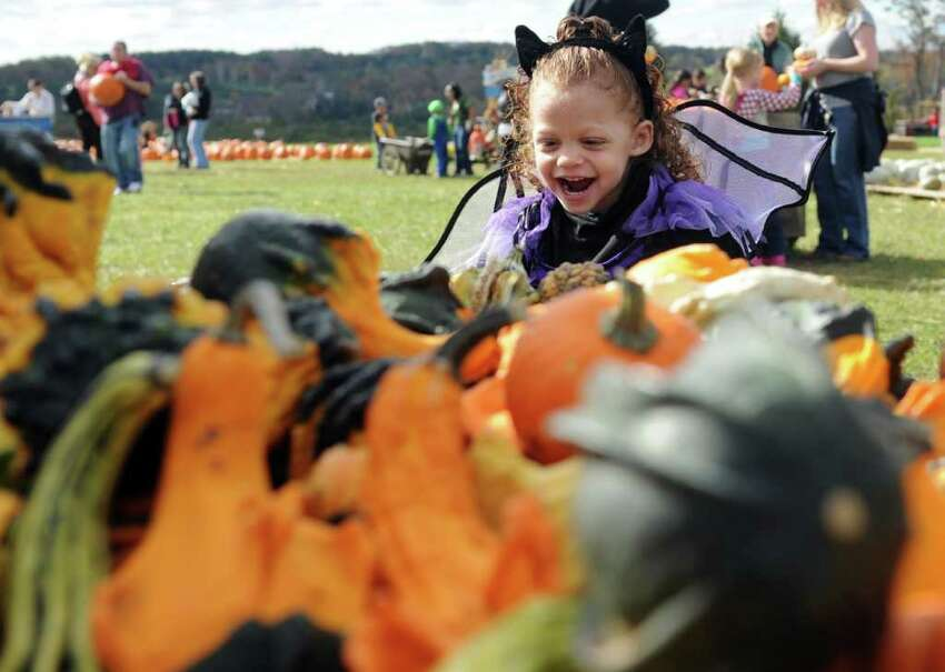 Two-year-old Ella Anthony, of Waterbury, wears her Halloween costume during the Jones Family Farms UNICEF Family Festival Saturday, Oct. 22, 2011 at Pumpkinseed Hill farm at 120 Beardsley Road in Shelton, Conn. The event continues Sunday, from 10am - 4pm with Magician Bryan Lizotte performing at 11:30am. Story Time will take place on the stage with nautical tales being read to the kids and farmers from the Harvest Kitchen cooking studio will be doing cooking demos.