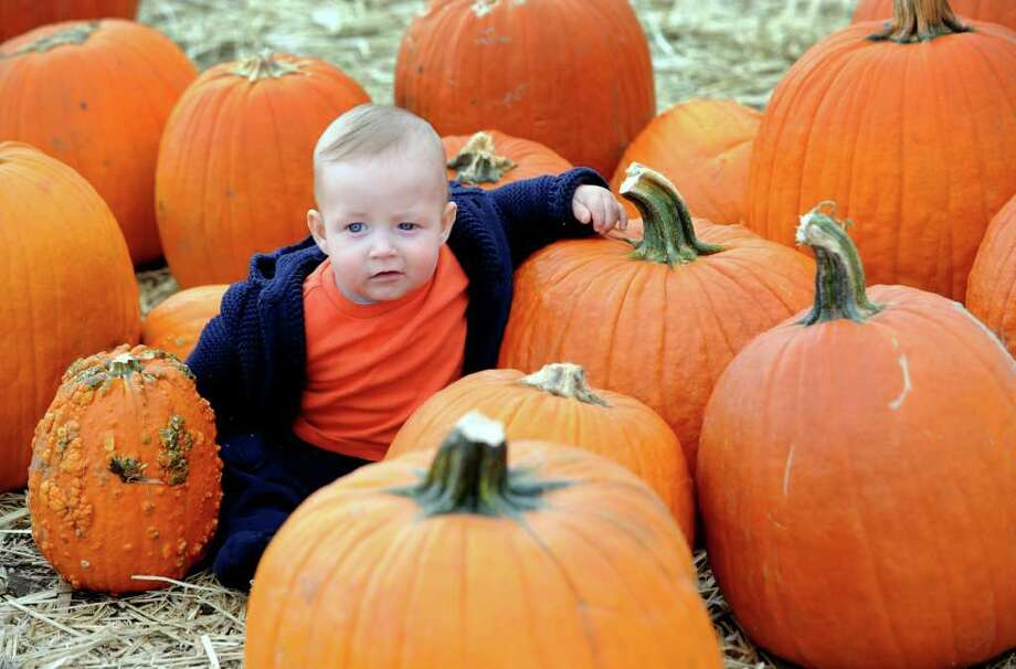 Seven-month-old Alexander Shurba, of Stamford, poses with the pumpkins during the Jones Family Farms UNICEF Family Festival Saturday, Oct. 22, 2011 at Pumpkinseed Hill farm at 120 Beardsley Road in Shelton, Conn.  The event continues Sunday, from 10am - 4pm with Magician Bryan Lizotte performing at 11:30am. Story Time will take place on the stage with nautical tales being read to the kids and farmers from the Harvest Kitchen cooking studio will be doing cooking demos. Photo: Autumn Driscoll / Connecticut Post