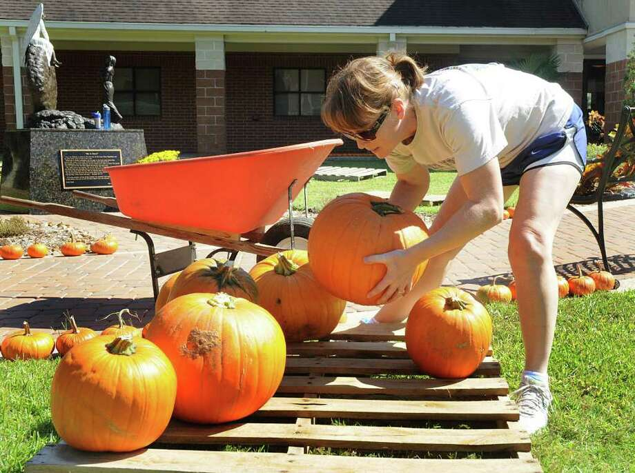 DAVID HOPPER: FOR THE CHRONICLE PRIME FOR PICKING: Kathy Wilson places pumpkins on a display for the 5th Annual Pumpkin Patch event at Christ Church United Methodist Church, 6363 Research Forest Drive, in The Woodlands. The patch is open through Oct. 31. Photo: David Hopper / freelance