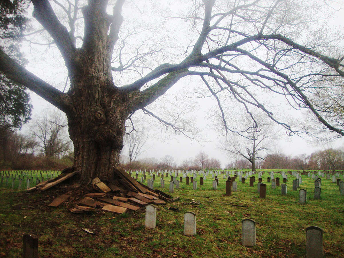 Get creeped out Connecticut is a very old place, and with that comes ghosts. If you're feeling adventurous, here's a list of haunted places to visit.