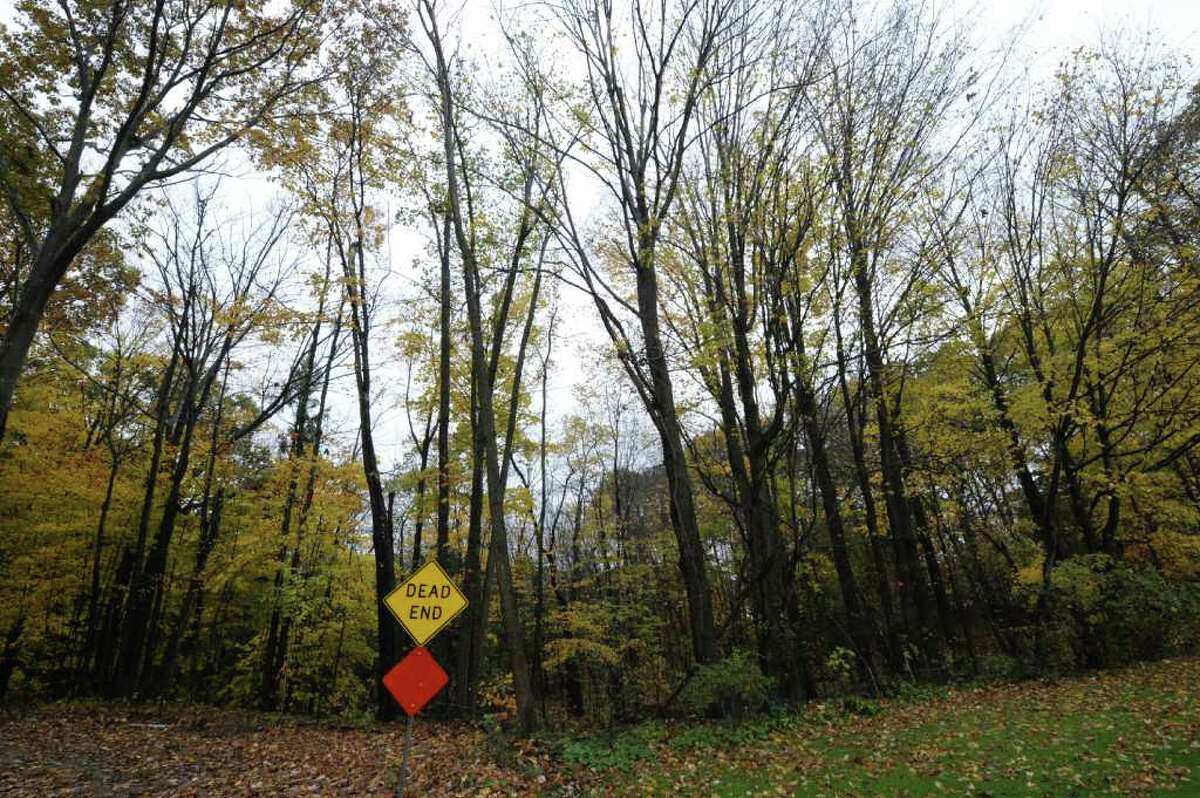 The wooded area between Olde Coach Road and Country Fair Land October 27, 2011, was the area that police search yesterday in Glenville, N.Y. for potential clues to a woman missing since 1979. (Skip Dickstein/Times Union)
