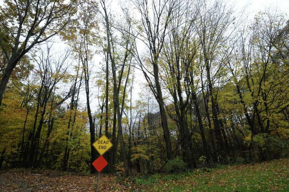 The wooded area between Olde Coach Road and Country Fair Land October 27, 2011, was the area that police search yesterday in Glenville, N.Y.  for potential clues to a woman missing since 1979.    (Skip Dickstein/Times Union) Photo: Skip Dickstein / 2011