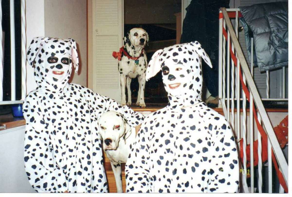 Dressing the dogs as humans would have been a nice added touch. Photo courtesy Awkward Family Photos.