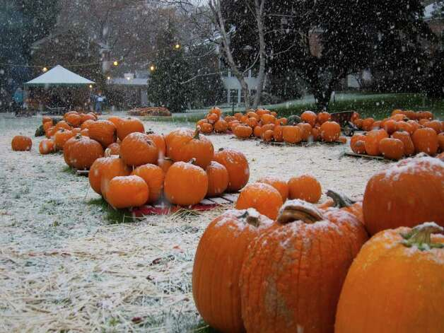 Snow falls on a pumpkin patch sale at St. John's Lutheran Church on Newfield Avenue in Stamford Saturday morning. Photo: Jonathan Lucas