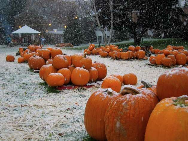 Pumpkins for sale at St. John's Lutheran Church on Newfield Avenue in Stamford as a nor'easter began dumping snow on the area Saturday morning. Photo: Jonathan Lucas