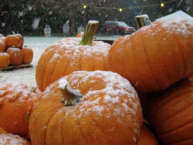 Snow falls on a pumpkin patch at St. John's Lutheran Church on Newfield Avenue in Stamford. Photo: Jonathan Lucas