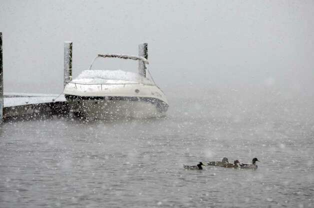 Large snowflakes fall on the water at Cove Island Park during a snow storm in Stamford on Saturday, Oct. 29, 2011. Photo: Amy Mortensen / Connecticut Post Freelance