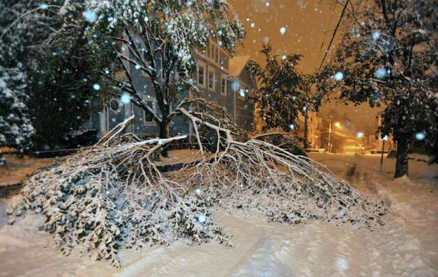 Tree branches block George Street at Deer Hill Avenue in Danbury on Saturday, 29, 2011. Photo: Jason Rearick