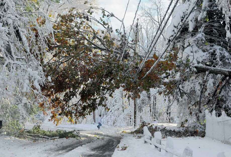 A man walks near a tree down on a power line a day after a snow storm in Glastonbury, Conn., Sunday, Oct. 30, 2011. Photo: AP