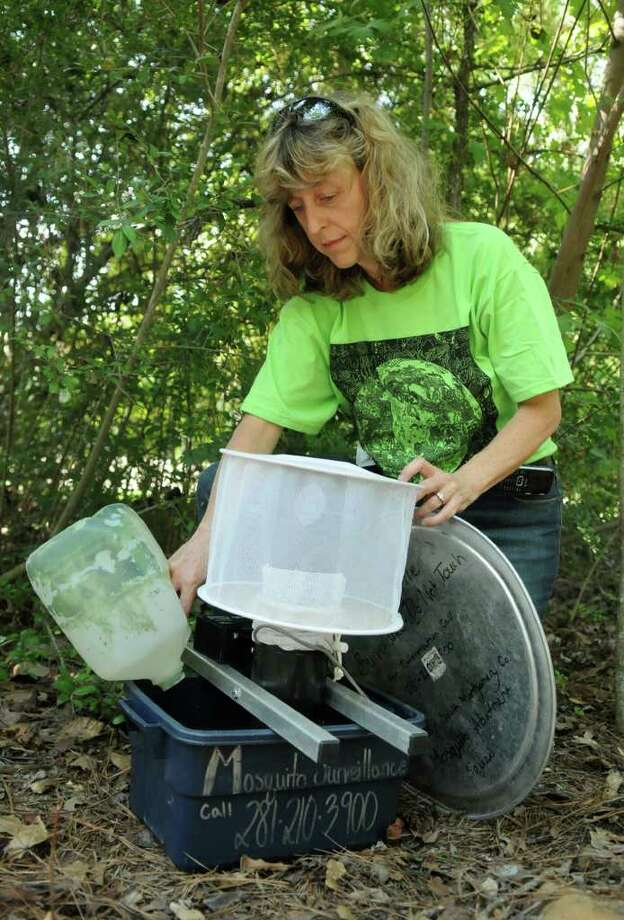 JERRY BAKER: FOR THE CHRONICLE SETTING THE TRAP: Lynne Aldrich, Environmental Services Manager for The Woodlands Township and a resident of The Woodlands, sets a gravid mosquito trap. Photo: Jerry Baker / Freelance