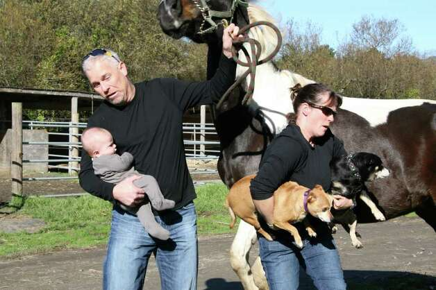 Taking a photo with the horse was never easy. Photo: Courtesy AwkwardFamilyPhotos.com