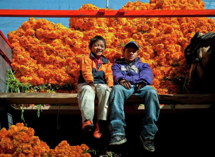 Two boys sit in front of bunches of flowers at the Jamaica flowers market in Mexico City, on October