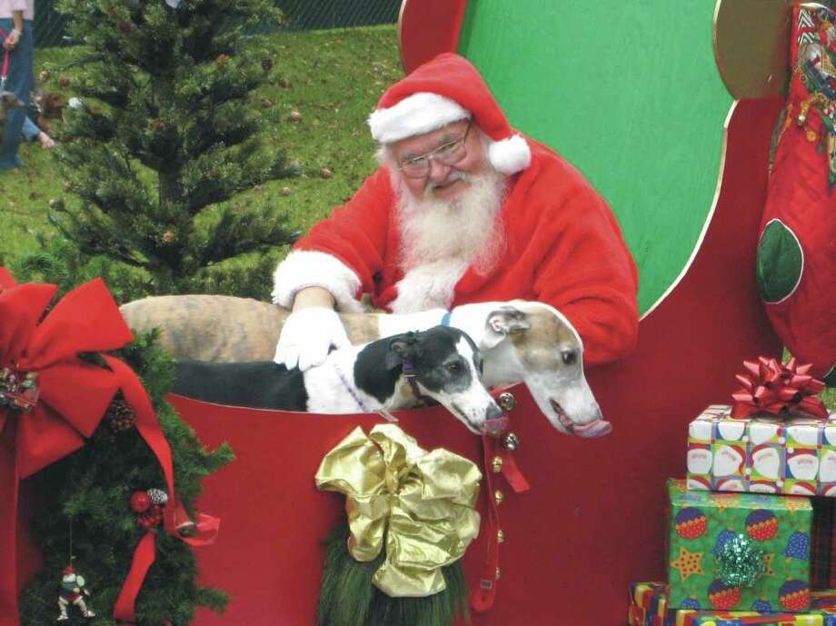 Woofstock, a fundraiser for Bay Area Pet Adoptions/ SPCA, is 11 a.m. on Saturday, November 5 at Clear Lake Park, Landolt Pavilion, 5001 NASA Parkway. The event will include a chance to have photos with Santa for a $5 donation. Photo: COURTESY WOOFSTOCK