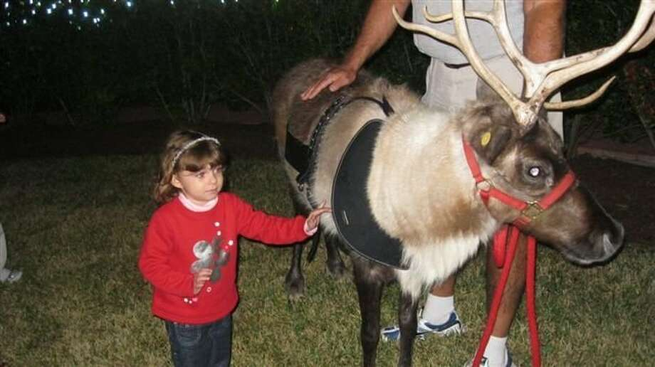 HOOF POWER: A reindeer from Lollipops & Licorice Petting Zoo in Dickinson will be on site at Christmas in Kemah, and available for free photos. Photo: COURTESY CHRISTMAS IN KEMAH
