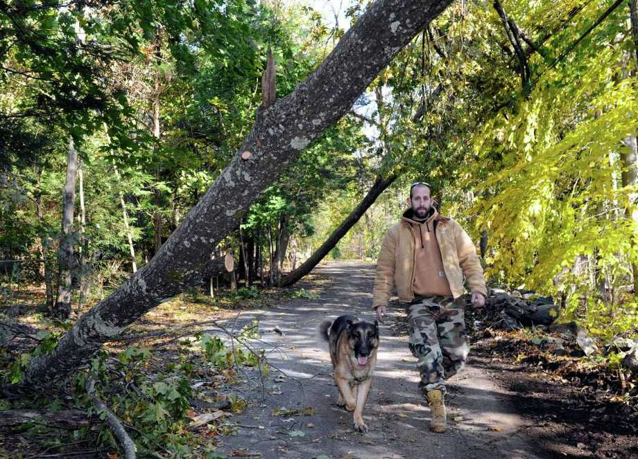 Jim Austin, of North Cove in Sherman, walks with his dog, Rocky, under fallen trees near his home. The trees are too low for his truck to get under so he has not been able to drive from his home since Saturday's snowfal brought down the trees. Photo taken Friday, Nov. 4, 2011. Photo: Carol Kaliff
