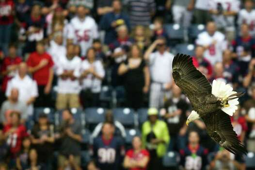 An eagle flies into the stadium during the playing of the national anthem before the Houston Texans face the Cleveland Browns in an NFL football game at Reliant Stadium on Sunday, Nov. 6, 2011, in Houston. Photo: Smiley N. Pool, Houston Chronicle / © 2011  Houston Chronicle