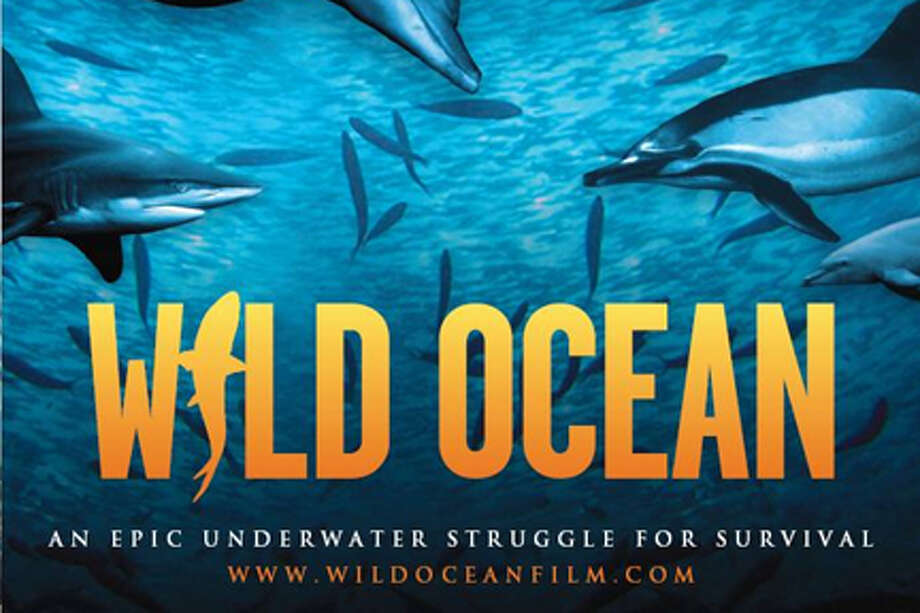 "A scene from the film ""Wild Ocean."""