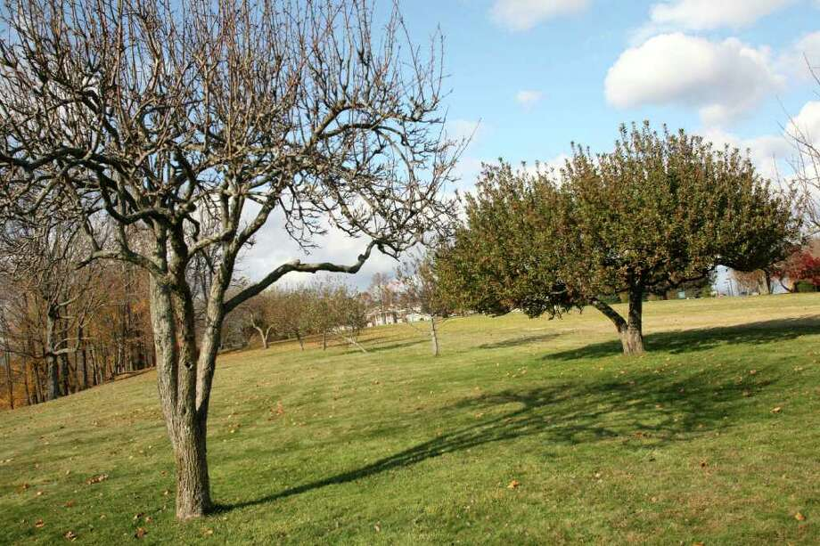 Convent of the Sacred Heart recently acquired the title of the entire 110 acres on which the campus is located at 1177 King Street for $9 million. Photo: David Ames / Greenwich Time