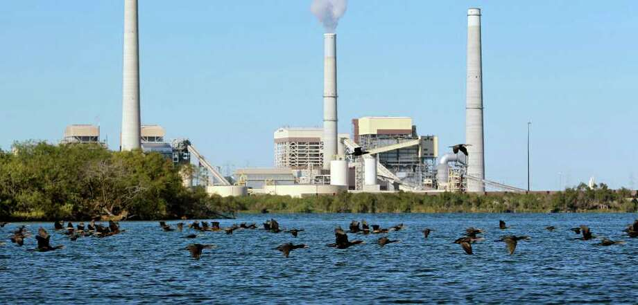 A flock of cormorants cruise by the power plant at Calveras Lake in this file photo. Photo: TOM REEL, SAN ANTONIO EXPRESS-NEWS / © 2011 San Antonio Express-News