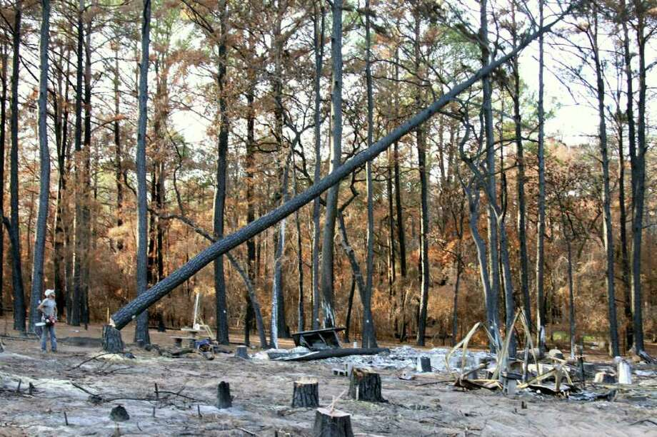 FORREST M. MIMS III MAKING ROOM: A Christian Disaster Relief volunteer fells a 65-feet tall burnt pine behind the foundation of an incinerated house (right foreground) near Bastrop. Photo: FORREST M MIMS 111