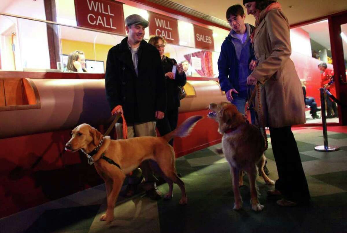 Paul Crisalli holds onto the leash of Scout as Nicole Jabaily holds onto the leash of Quickly at the ticket window during 'Dogs Night Out' at the Seattle Repertory Theatre on Sunday, November 13, 2011. 100 dogs were welcomed into the theater to see the show