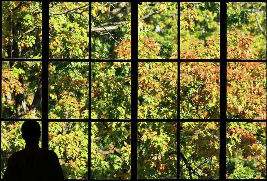 A man stands by a window looking out onto colorful leaves in the Russell Senate Office Building, on November 2, 2011 in Washington, DC. Fall foliage in the Washington area usually peaks in late October and early November. Photo: Mark Wilson, Getty / 2011 Getty Images