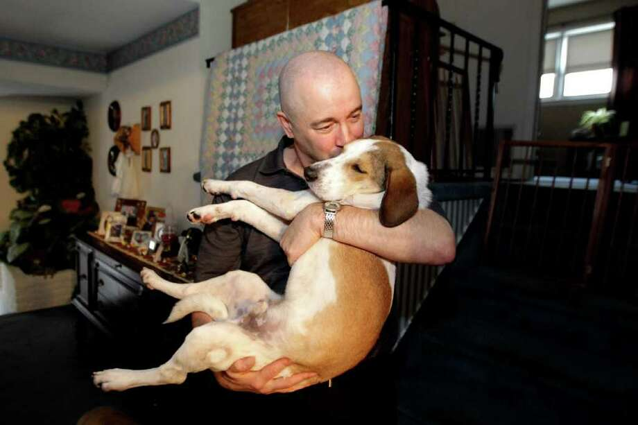 """Joe Dwyer, of Nutley, N.J., plays with his new dog Daniel, also known as the Miracle Dog, Wednesday, Nov. 16, 2011 in Nutley. The beagle mix got its nickname after it survived an Alabama dog pound gas chamber. Volunteers named the dog """"Daniel"""" after the biblical figure who survived the lion's den. The family received the dog on Nov. 10 from Eleventh Hour Rescue, the organization that took possession of him last month. Dwyer said Daniel has become fast friends with the Nutley family's other four pooches — two dachshunds, a beagle mix and a pit bull mix.  (AP Photo/Julio Cortez) Photo: Julio Cortez"""
