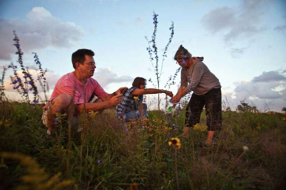 Chris Gray, left, along with plant enthusiasts Kelly Walker and Jane Reierson as they scour a pristine coastal prairie off Spencer Highway Nov. 2, 2011 in Deer Park, TX. Their goal was to harvest plants and seeds. (Eric Kayne/For the Chronicle) Photo: Eric Kayne / © 2011 Eric Kayne